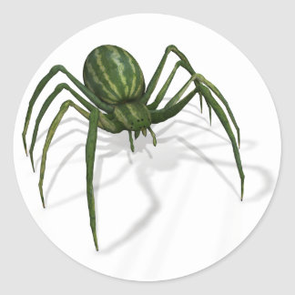 Rare Watermelon Spider Classic Round Sticker