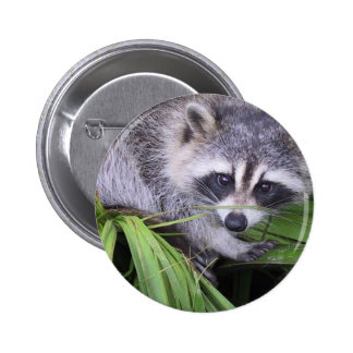 Rascal Racoon 2 Inch Round Button