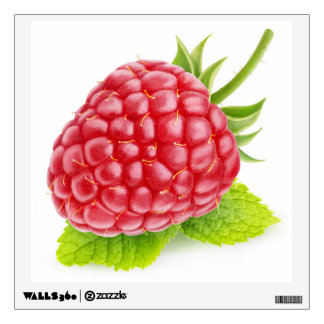 Raspberry and mint wall decal