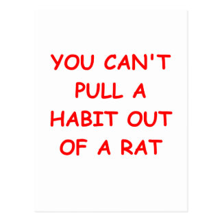 RAT divorce joke Postcard
