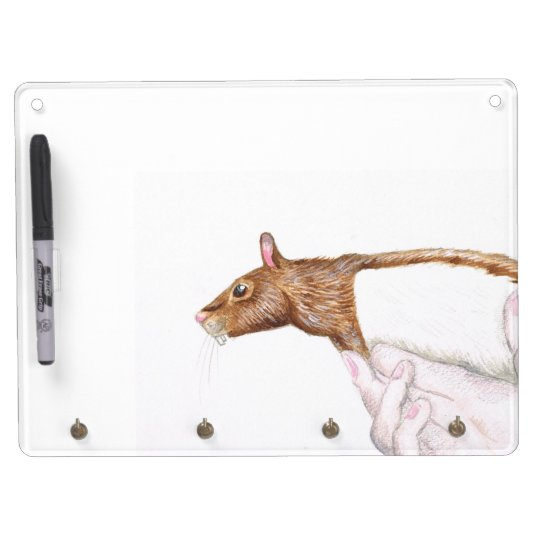 rat dry erase board