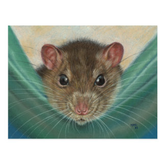 Rat in Hammock postcard KMCoriginals