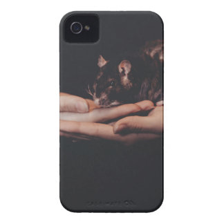 Rat in hand... iPhone 4 case