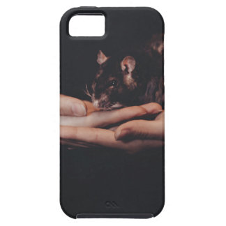 Rat in hand... iPhone 5 covers