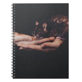 Rat in hand... notebooks