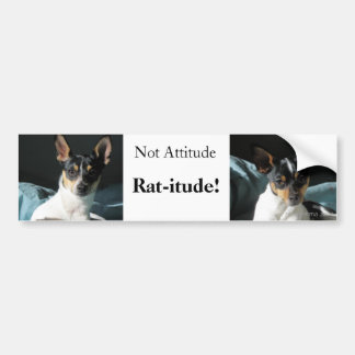 Rat-itude! Bumper Sticker