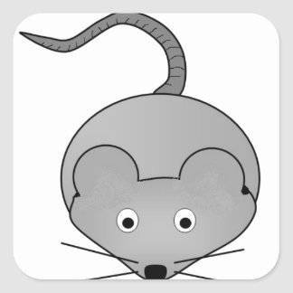 Rat Square Sticker