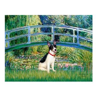 Rat Terrier - Bridge Postcard