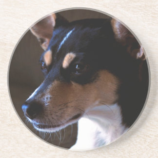 Rat Terrier Coaster