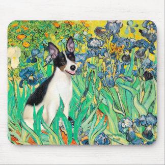Rat Terrier - Irises Mouse Pads