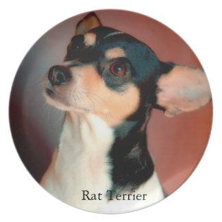Rat Terrier Plates