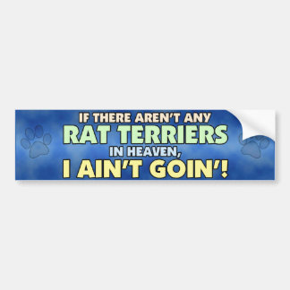 Rat Terriers in Heaven Bumper Sticker