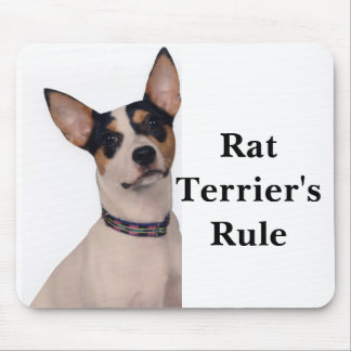 Rat Terrier's Rule Mouse Pad