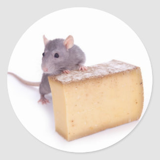 rat with cheese classic round sticker