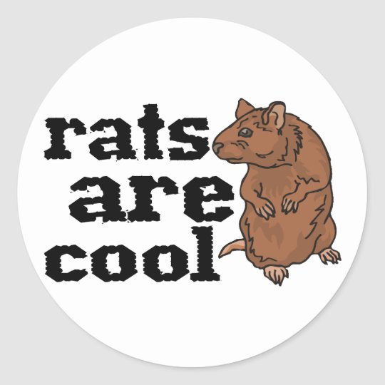 Rats Are Cool Classic Round Sticker