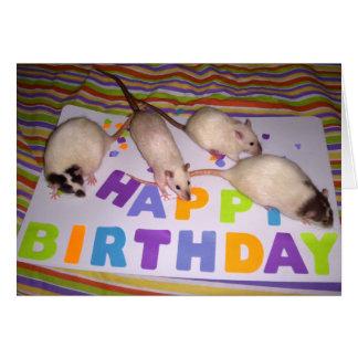Rats Birthday Card! v2 Greeting Card