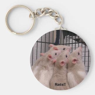 Rats!! Keychain