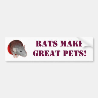 Rats make great pets! Bumper Sticker