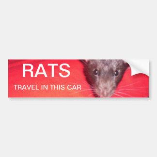 rats travel bumper sticker