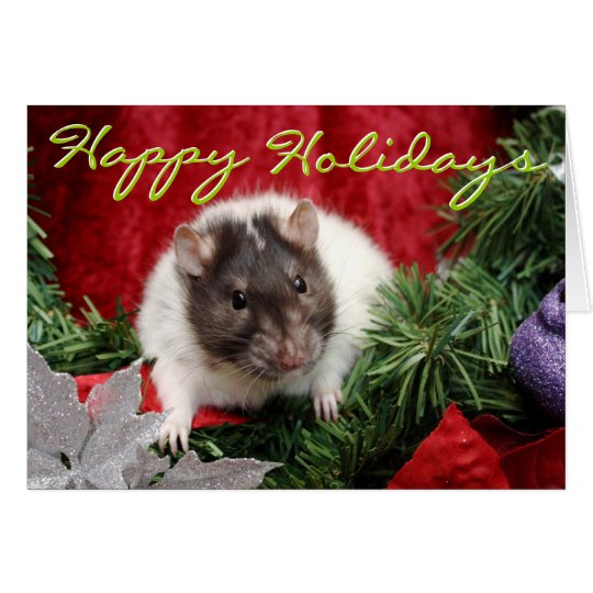 Rattie Holiday Card
