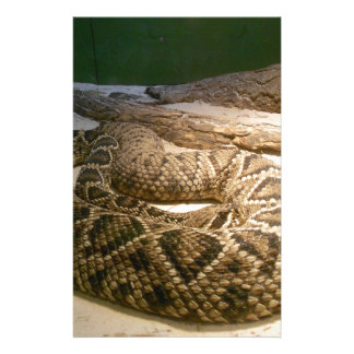 Rattle Snake Stationery