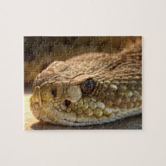 Rattle Snake's Head Jigsaw Puzzle