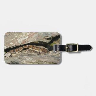 Rattlesnake at Shenandoah National Park Luggage Tag
