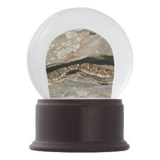 Rattlesnake at Shenandoah National Park Snow Globe