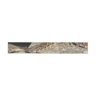 Rattlesnake at Shenandoah National Park Wrap Around Label