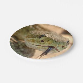 Rattlesnake Closeup Photo 7 Inch Paper Plate