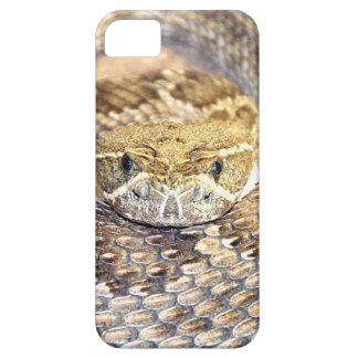 Rattlesnake face iPhone 5 cover