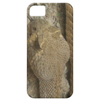 Rattlesnake iPhone 5 Cover