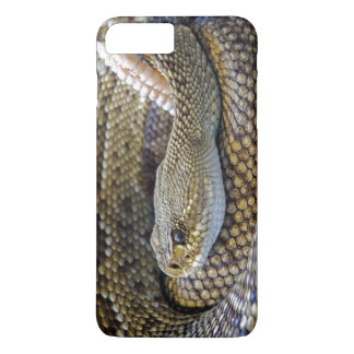 Rattlesnake iPhone Case