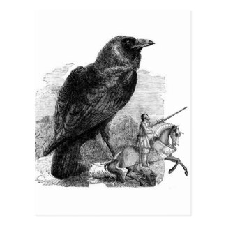 Raven and The Knight Postcard