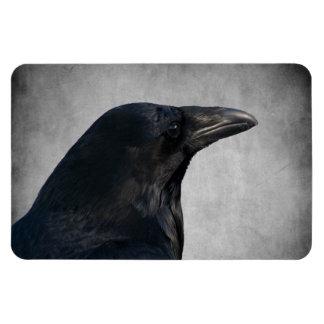 Raven Glamour Shot Magnet