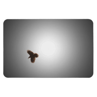 Raven in Flight Rectangular Photo Magnet
