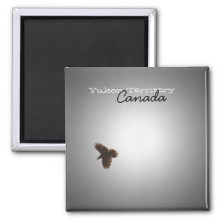 Raven in Flight Yukon Territory Souvenir Fridge Magnet