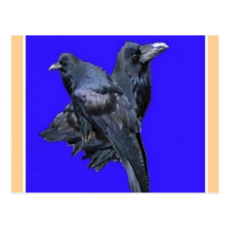 Raven Lovers Purple Gifts by Sharles Postcard