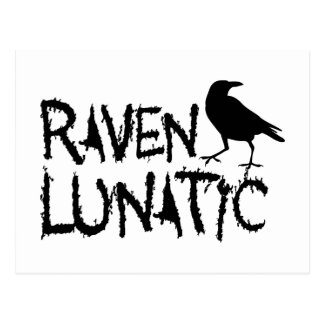 Raven Lunatic Black Crow Postcard