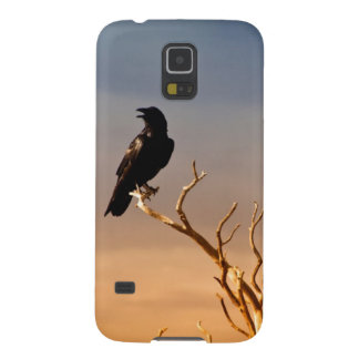 Raven on Sunlit Tree Branches, Grand Canyon Galaxy S5 Cases
