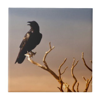 Raven on Sunlit Tree Branches, Grand Canyon Tiles
