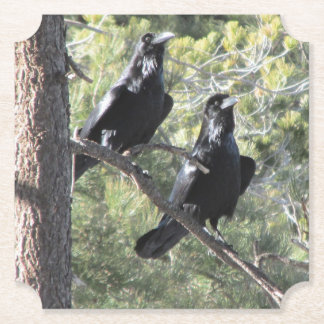 Raven Pair in the Mountain Paper Coaster