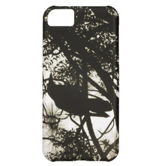 Raven Steampunk iPhone 5C Covers
