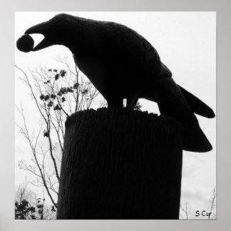 Raven's Bite, S Cyr Poster