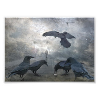 Ravens play with lost Time Photographic Print