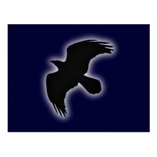 Ravens raven postcard