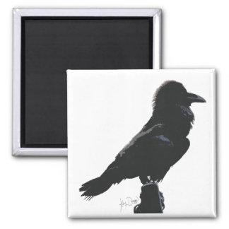 Ravensrock magnet