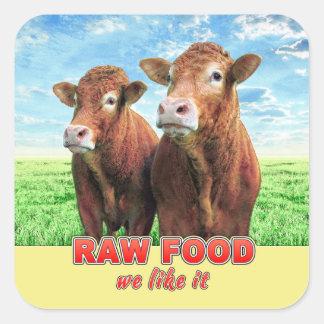 RAW FOOD we like it Square Sticker