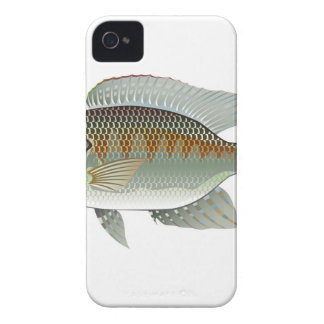 Raw Seafood Tilapia Fish Vector iPhone 4 Covers