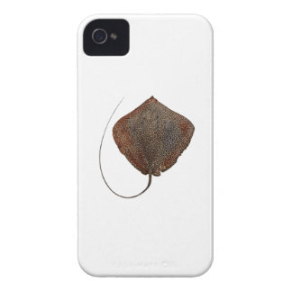 RAY OF LIFE iPhone 4 COVERS